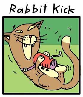 Products/RabbitKick.jpg